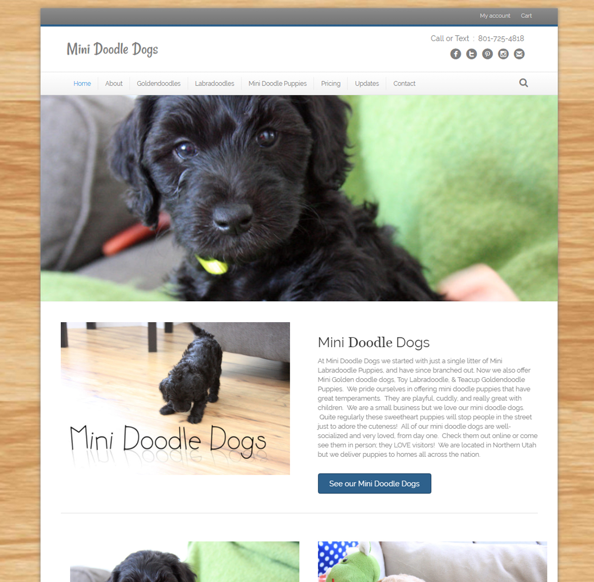 MiniDoodleDogs-Website